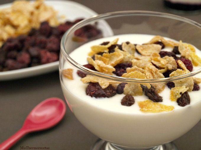 yogur natural recetas thermomix misthermorecetas